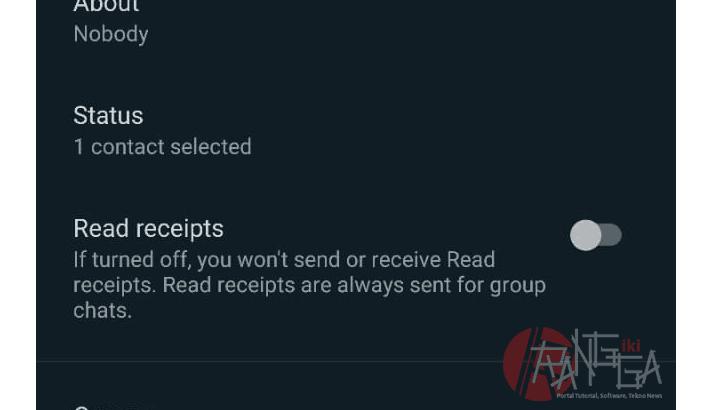 menu read receipt digunakan sebagai cara mudah untuk disable double ceklist di whatsapp